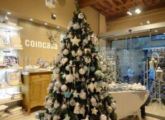 Coincasa Lucca GIA 2016
