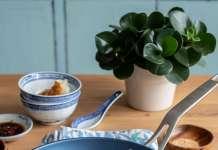 PPG Whitford chinese porcelain